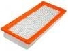 Air Filter:5M6Z-9601-AA